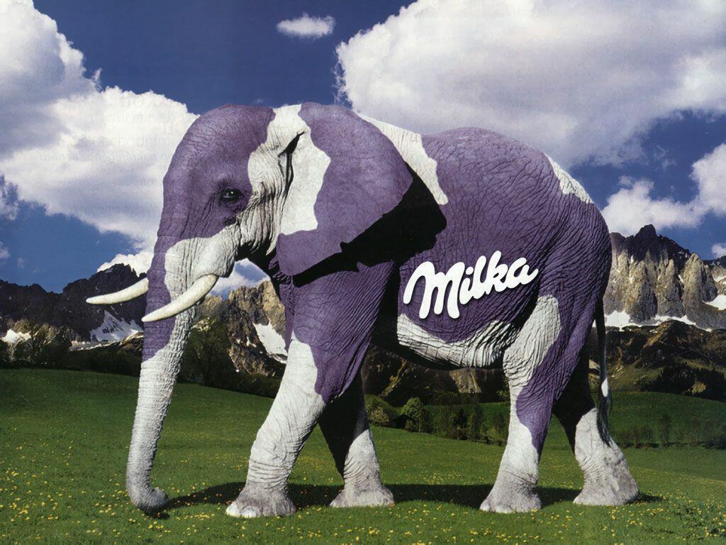 Que de la vache !!! - Page 4 Milka-elefante